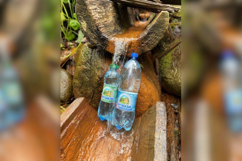 Куртяевская минеральная вода
